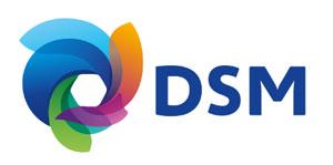 CSE Society – DSM